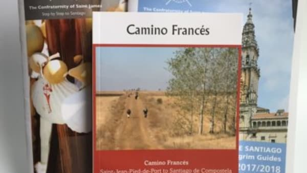 covers of all you need for camino frances guidebooks bundle